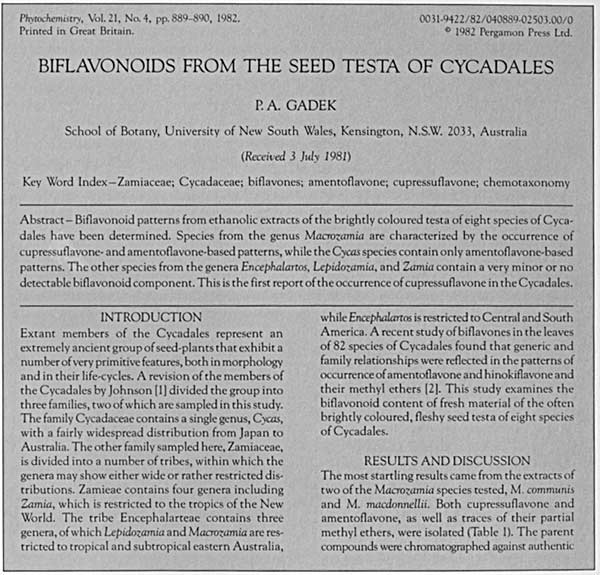 Phytochemistry: cycadales article